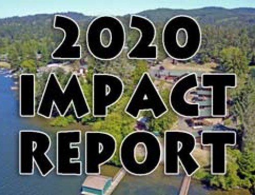 2020 Year Impact Report